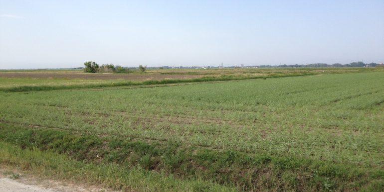 Terreno Agricolo Montaletto