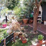Villa in vendita nel verde di Milano Marittima