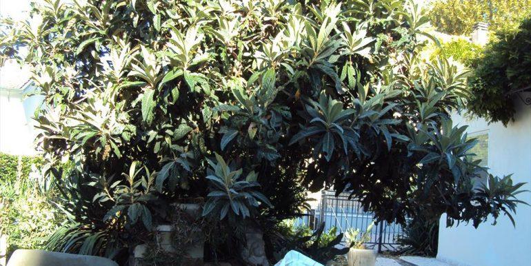 8 giardino