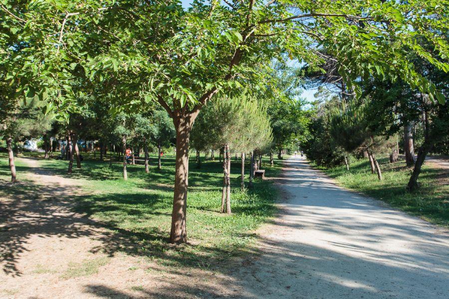 Albergo in vendita a Pinarella