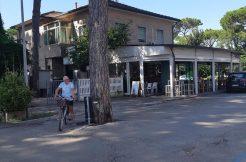 Due appartamenti in vendita a Milano Marittima