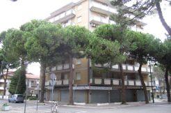 Appartamento trilocale in vendita a Zadina
