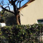 Casa singola a Cervia centro