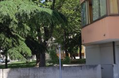 Appartamento tre camere letto Pinarella